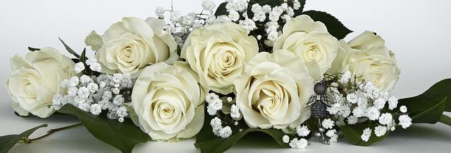 חנות פרחים בחיפה אצטרובל