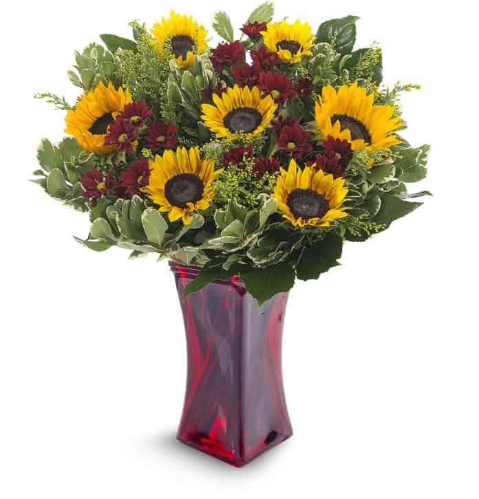 חנות פרחים במודיעין ומשלוחי פרחים במודיעין