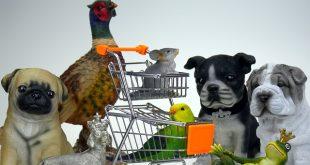 חנות חיות מושלמת