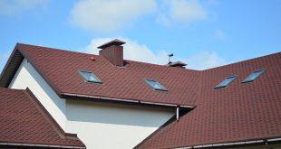 זיפות גגות במרכז