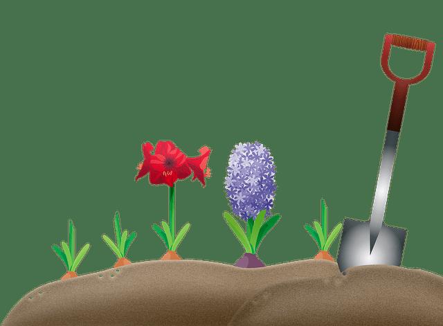 garden-4276600_640